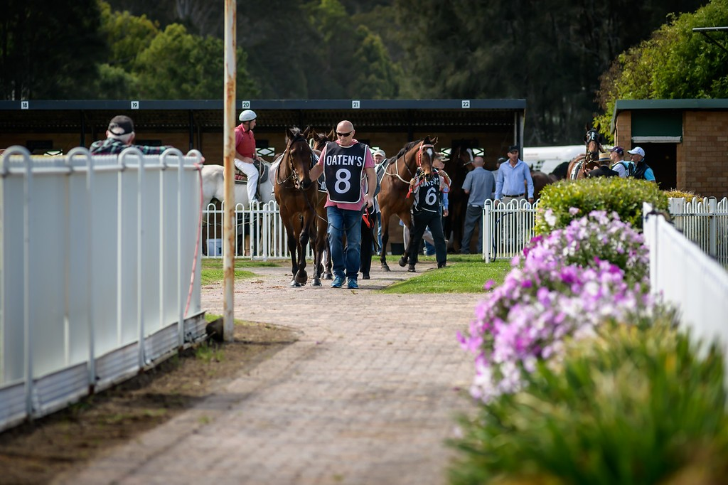 Races Saturday 11th May @ Lismore Turf Club | North Lismore | New South Wales | Australia