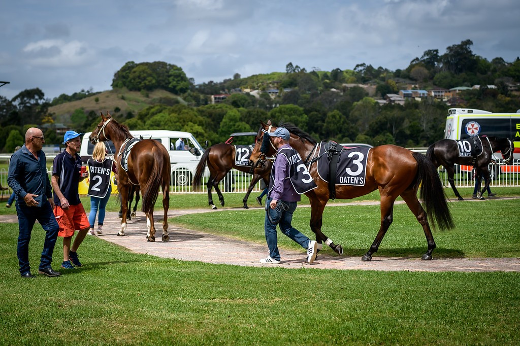 Races Monday 24th August @ Lismore Turf Club | North Lismore | New South Wales | Australia