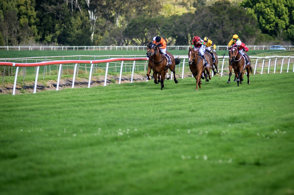 Races Monday 9th November @ Lismore Turf Club | Lismore | New South Wales | Australia