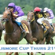 The Lismore Cup